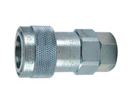 5000 Series Coupler - Female Pipe